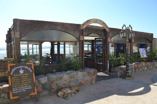Ghazala Hotel: Das Strandrestaurant