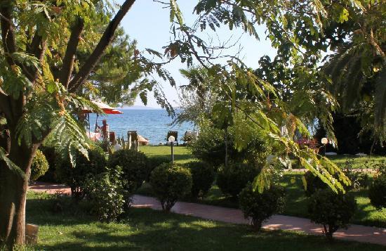 Kucukkuyu, Turchia: garden