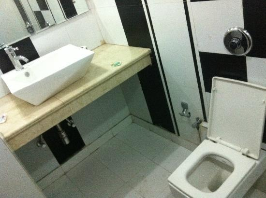 Hotel Shiv Dev International: Bathroom