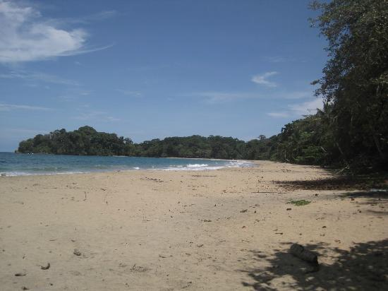 Casitas de Punta Uva: Punta Uva's great beach