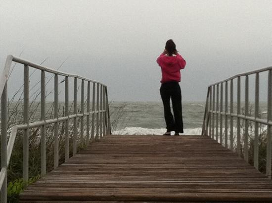 Myrtle Beach State Park: before the storm