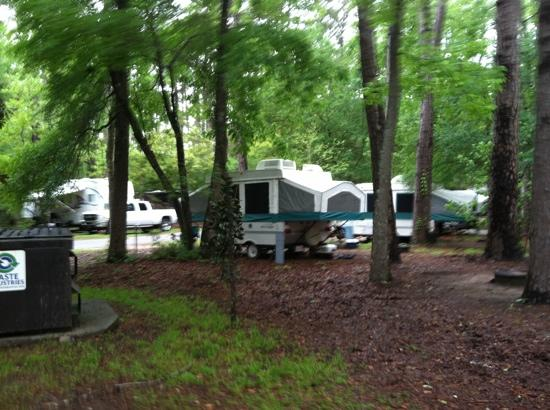 Campground Picture Of Myrtle Beach State Park Myrtle Beach Tripadvisor