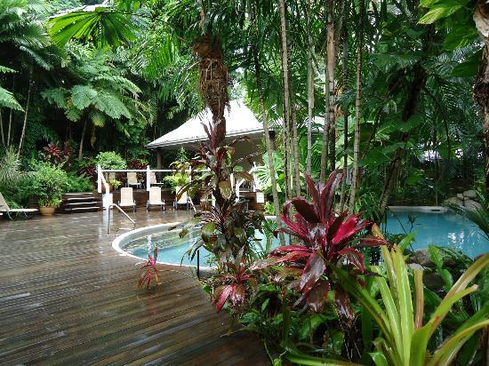 Palm Cove Tropic Apartments : Pool area