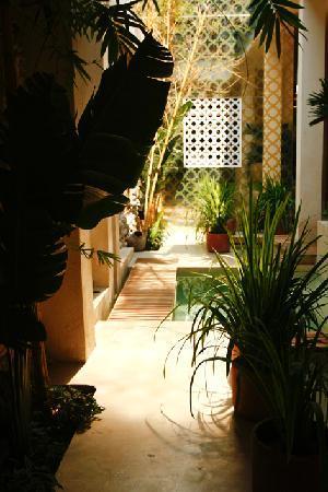 Hotel Casa Lola: Entrada.