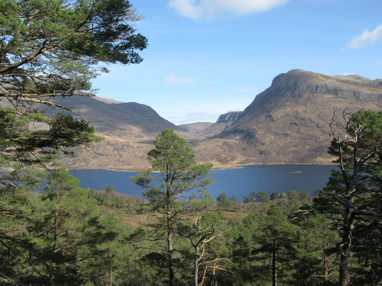 Kinlochewe, UK: Mountain trail: view over Loch Maree to Slioch
