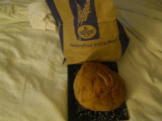 Great Harvest Bread Co.: Maple Cinnamon Chip Bread! YUMMY!!!