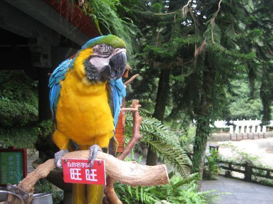 Yunxian Park : 雲仙楽園 園内