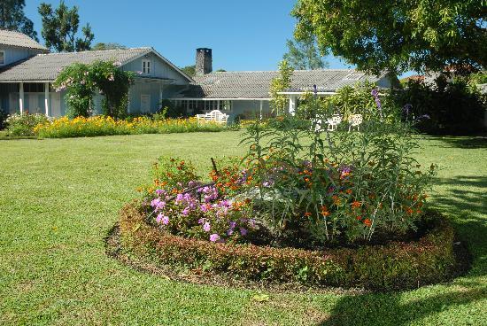 Hotel Panamonte: Jardines