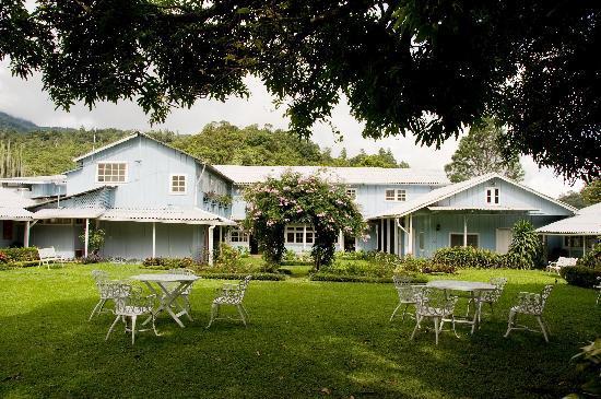 Hotel Panamonte : Jardines