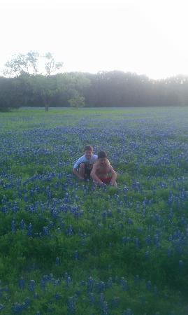 Dinosaur Valley State Park: Bluebonnets everywhere