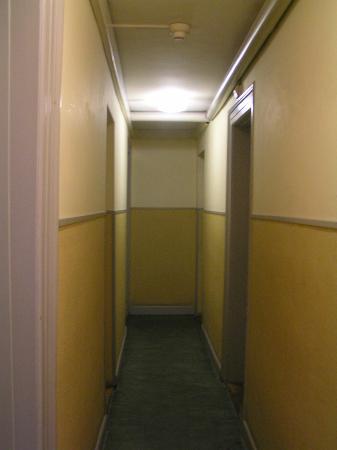 City Backpacker Hotel Biber : Pasillos