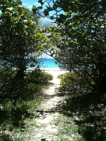 Navío Beach: Navio Beach