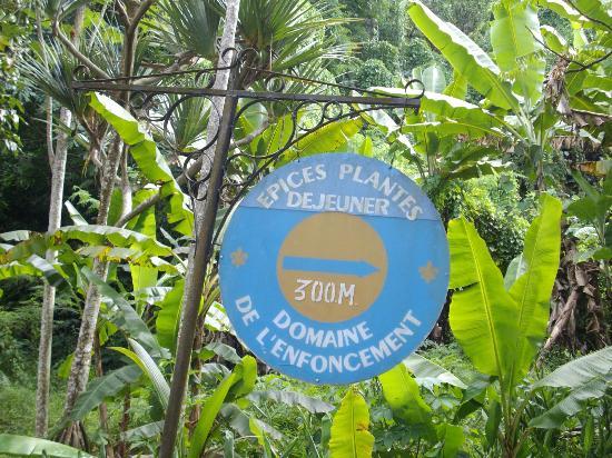 Le jardin du roi picture of le jardin du roi spice for Villas de jardin seychelles tripadvisor