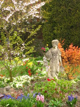 Woodlands Bed & Breakfast: The lovely garden