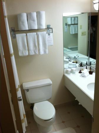 Lincolnshire Marriott Resort: Bathroom