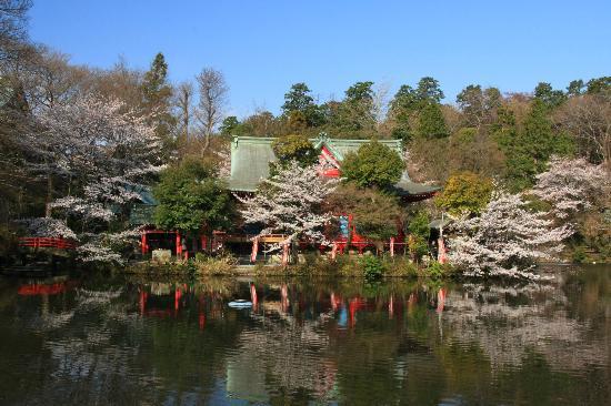 Inokashira Park : 井之頭弁財天