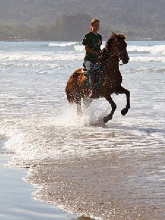 Sunrise Ranch: Horse back riding Tours Playa Carmen