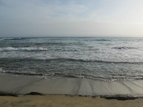 Playa Chiquita Lodge: View from the beach