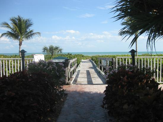 Sanibel Arms West Condominium: Well Manicured grounds and walkway