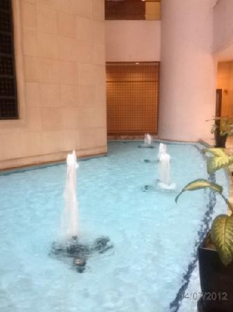 Ambassador Row Hotel Suites by Lanson Place: lobby decorative pond