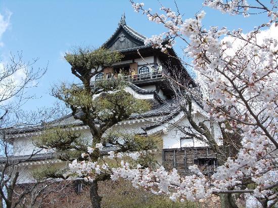 Inuyama, Japan: 国宝犬山城 桜も美しい
