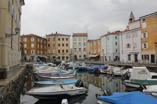 Muggia : restaurants
