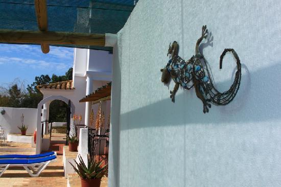 Casa Rosa : Gecko