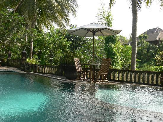 Taman Sakti: pool