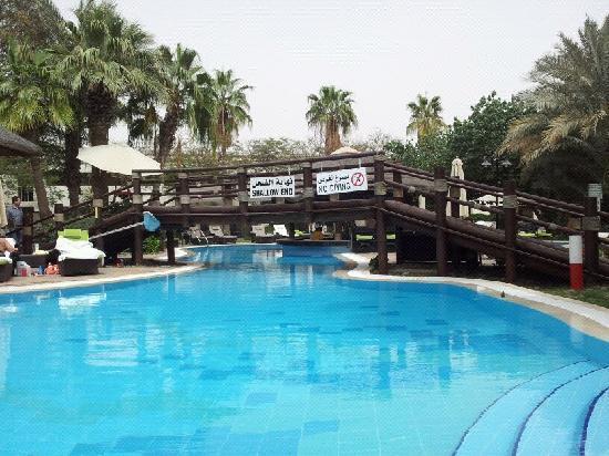 download poolanlagen im garten | siteminsk, Garten und erstellen