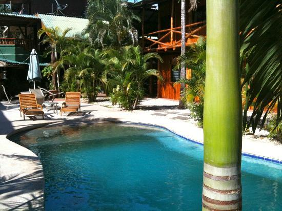 Sugar's Monkey: Pool area