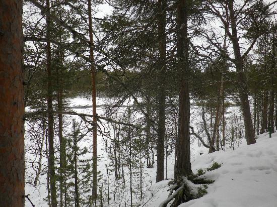 Tradition Hotel Kultahovi Inari: Sehr schöne Aussicht auf den Fluss
