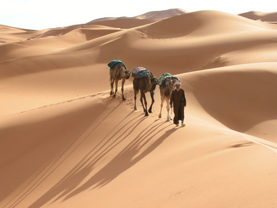 Moroccan Trails - Private Tours: Echigaga Desert