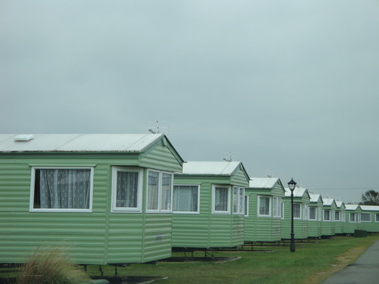 Parkdean - Mullion Holiday Park: A row of nice Darwn caravans  like the one we stayed in