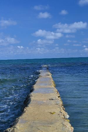 Villa Leonora Beach Resort: A 100 metros del hotel nos encontramos con esto.