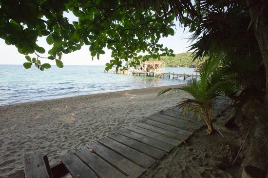 Bay Islands, Honduras: View from beach looking towards resort