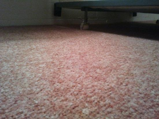 Kwa'lilas Hotel: The smelly carpet and quality bed