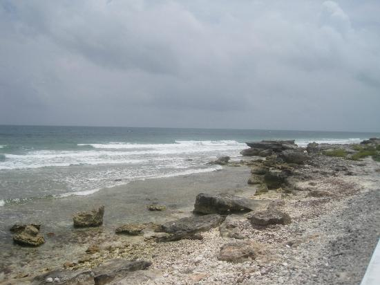 Casa Ixchel: Looking south along the shoreline
