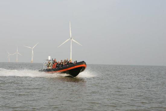 Bay Tours Sea Safaris: leaving the turbines, heading home