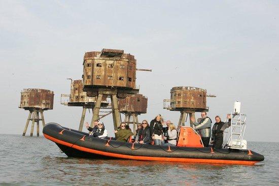 Bay Tours Sea Safaris