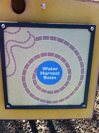 Xeriscape Garden: Educational Signage