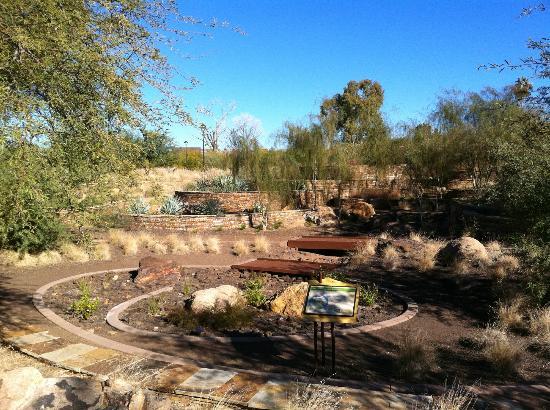 Xeriscape Garden: Terraced Garden