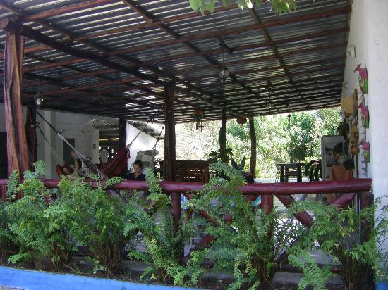 Hostal Cariguana: our own little oasis