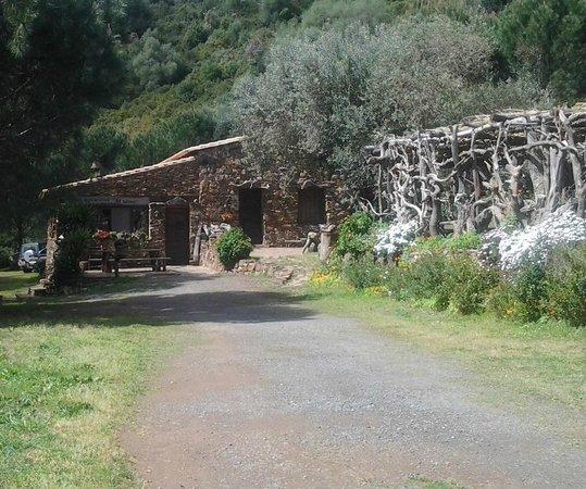 """Саррок, Италия: Vista frontale dell'agriturismo """"su Lilloni"""""""
