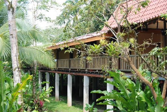 Hotel El Bambu: Nature and confort living together