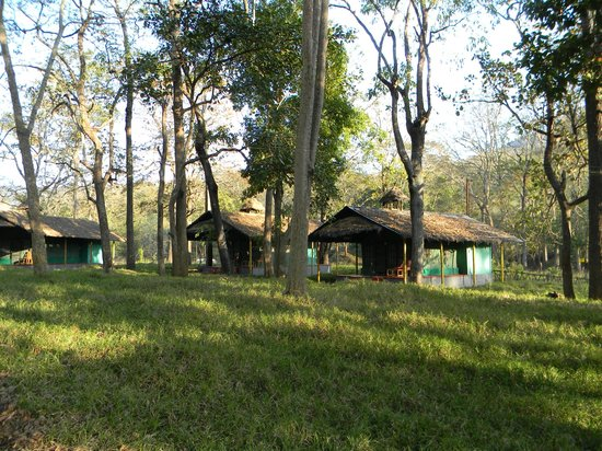 Palakkad, Ινδία: Tents in Parambikulam Tiger reserve.