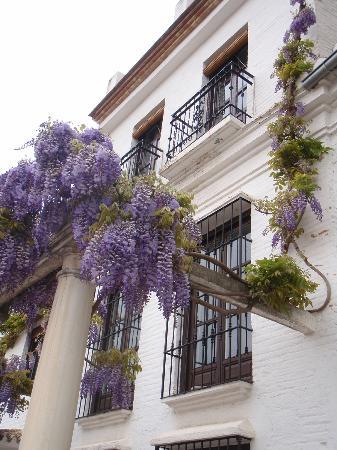 Carmen de la Alcubilla del Caracol: Beautiful grounds and exterior in April