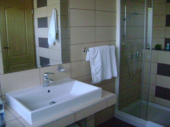 Alp Penzion: bathroom
