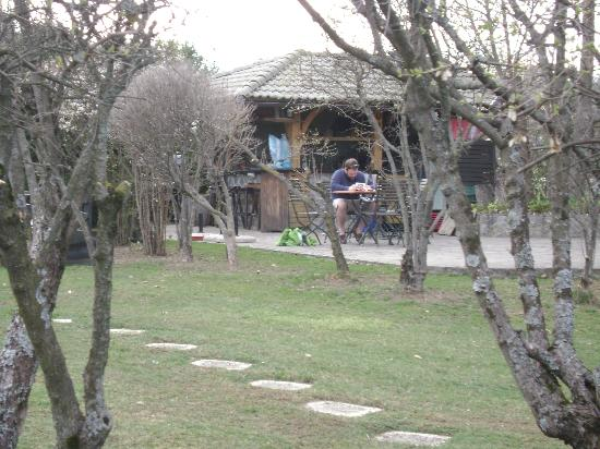 Alp Penzion: back patio