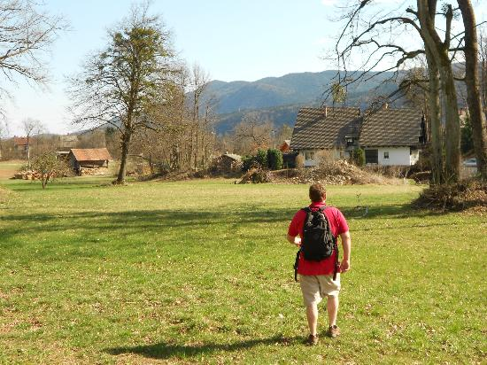 Alp Penzion: taking the long way home- walking through the fields
