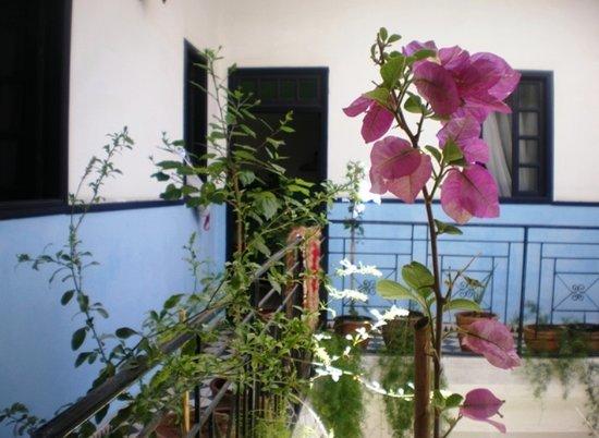 Photo of Riad Sidi Magdoul Essaouira